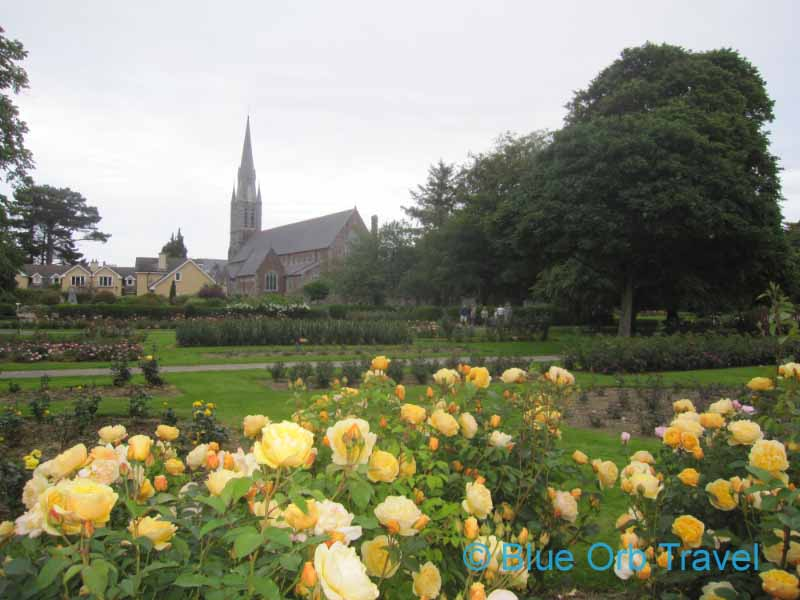 A Rose of Tralee, Ireland