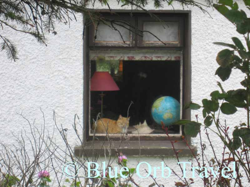 Cat in Cottage Window Dreams of Traveling the Globe, Sligo, Ireland