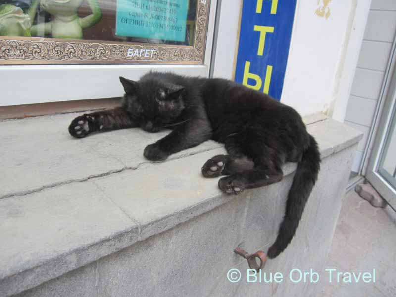Cat on a Window Ledge, Rostov on Don, Russia